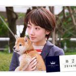 世界一難しい恋(セカムズ)第2話のあらすじ・感想・ネタバレ。大野智、波瑠。