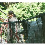 精霊の守り人 悲しき破壊神・シーズン2。第5話。ネタバレ、あらすじ、感想。「聖なる場所へ」。原作、キャスト、視聴率は?綾瀬はるかさんが、アスラを助ける?